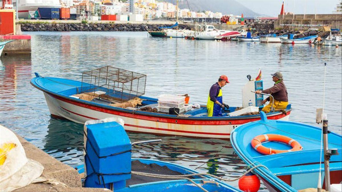"""La flota de pesca profesional artesanal canaria, acusa al Gobierno de España de favorecer la """"sobrepesca"""" industrial de atún en África y condenar a los barcos de las Islas."""