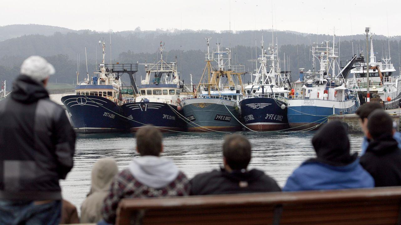 La UE y el Gobierno de España apoyan a la Pesca Profesional, ante la idea de la OMC de la retirada de subvenciones al gasóleo y otras ayudas.