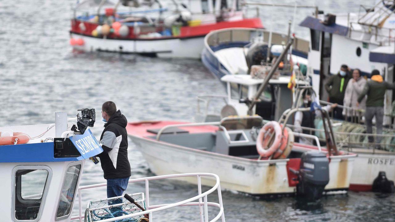 Bocinazos a Bruselas de pescadores profesionales de bajura y mariscadores de Galicia