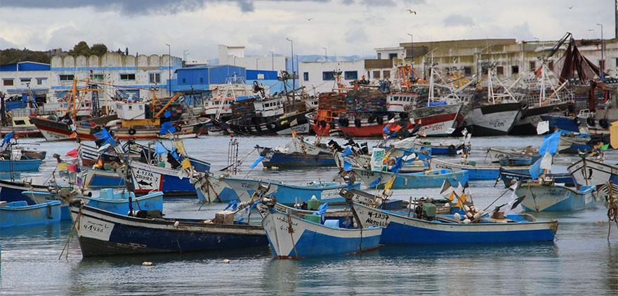 barcos pesca-marruecos-canarias